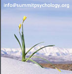 Summit Psychology Group - Nelson, BC